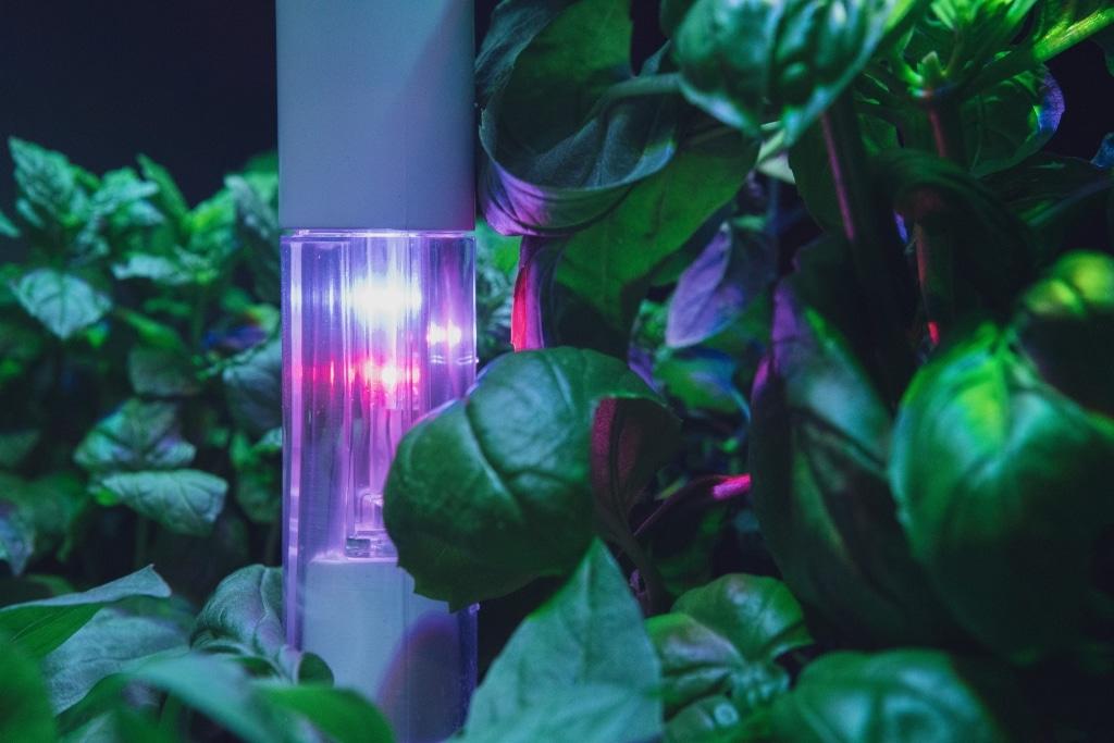 Plantui Smart Garden Boosting Height Block 03