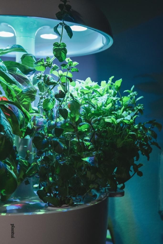 Plantui Smart Garden Complete 04