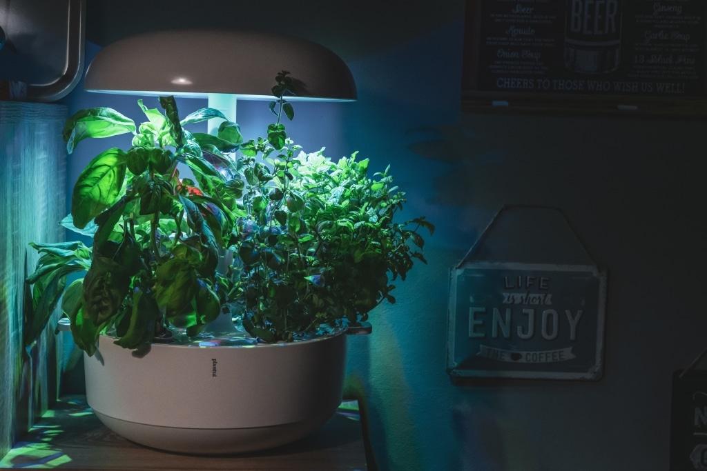 Plantui Smart Garden Complete 05