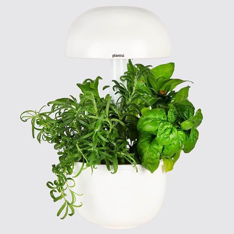 Plantui Smart Garden Official 3e