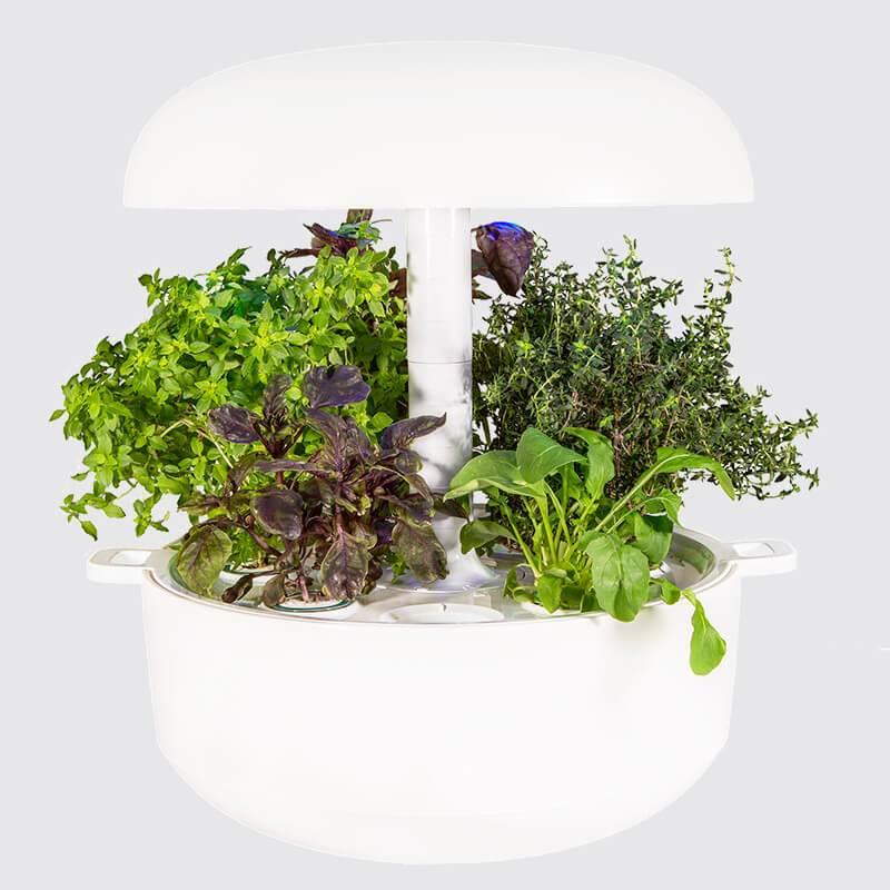 Plantui Smart Garden Official 6