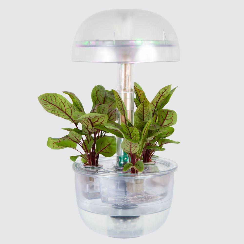 Plantui Smart Garden Official Naked Small