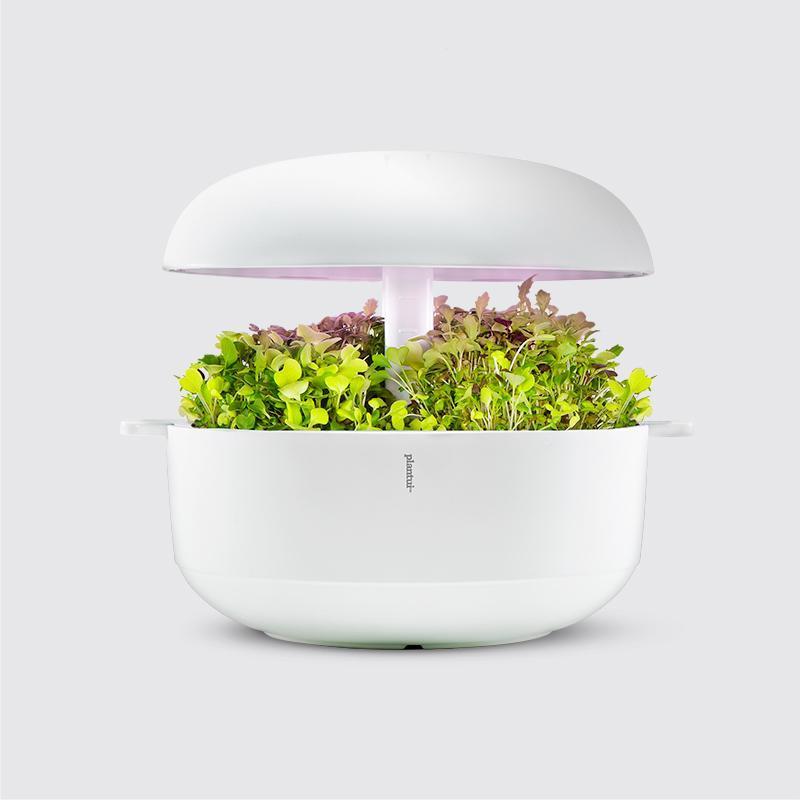 Plantui Smart Garden Official Smart Microgreens