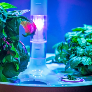 Plantui Smart Garden Plants Overview 02 Square