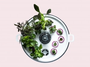 Plantui Smart Garden Titelbild