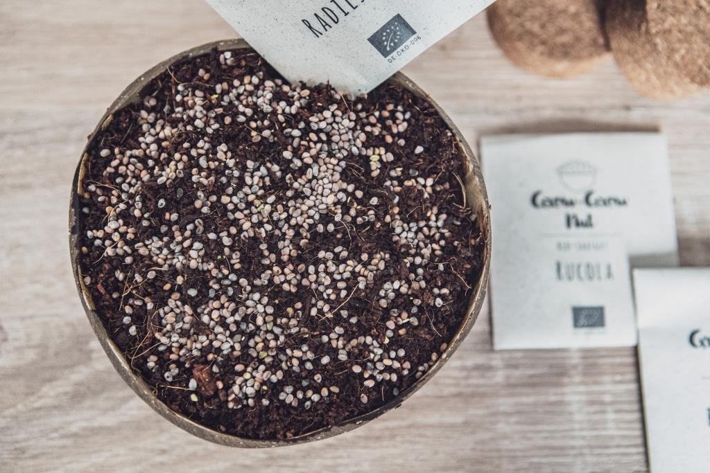 Grow Grow Nut Aussaehen 06