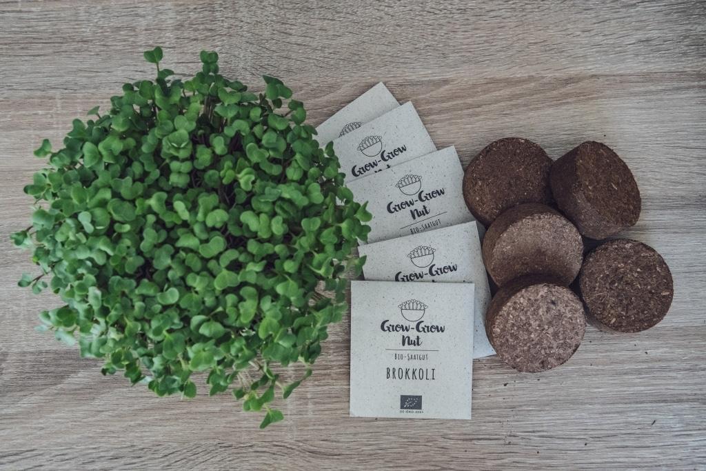 Grow Grow Nut Vermischtes 02